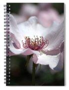Delicate Pink Spiral Notebook