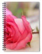 Delicate Rose Spiral Notebook