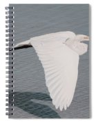 Delicate Wings In Flight Spiral Notebook