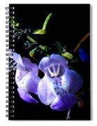 Delicately Purple Spiral Notebook