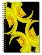 Delightful Daffodil Abstract Spiral Notebook