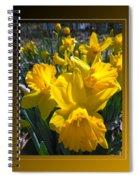 Delightful Daffodils Spiral Notebook