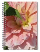 Delightful Smile Dahlia Flower Spiral Notebook