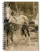 Delivering The Mail 1907 Spiral Notebook
