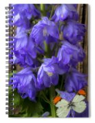 Delphinium And Butterfly Spiral Notebook