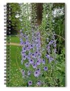 Delphiniums  Spiral Notebook