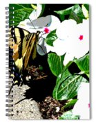 Delta Butterfly Cafe Spiral Notebook