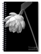 Demure Lotus Spiral Notebook