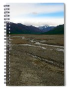 Denali National Park 3 Spiral Notebook