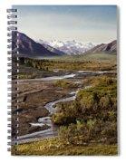 Denali Toklat River Spiral Notebook
