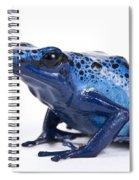 Dendrobates Azureus Spiral Notebook