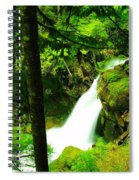 Denny Camp Falls  Spiral Notebook
