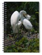 Dental Care Spiral Notebook