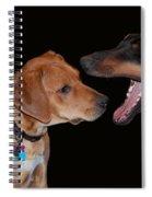 Dentist Spiral Notebook