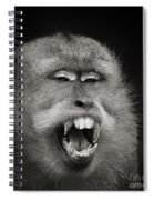 Dentist Time Spiral Notebook
