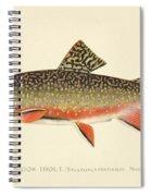 Denton Brook Trout Spiral Notebook