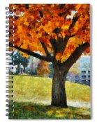 Denver Park 5 Spiral Notebook
