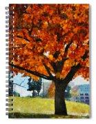 Denver Park 6 Spiral Notebook