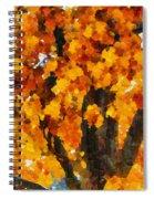 Denver Park 7 Spiral Notebook