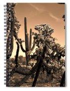 Desert At Dusk Spiral Notebook