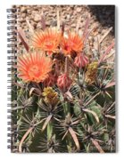 Desert Beauty Spiral Notebook