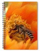 Desert Bee Spiral Notebook