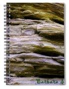 Desert Boulder Detail Spiral Notebook