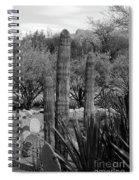 Desert Cactus Spiral Notebook