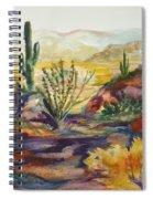Desert Color Spiral Notebook