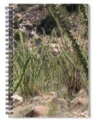 Desert Forest Spiral Notebook