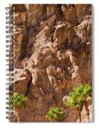 Desert Mountain Spiral Notebook