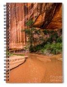Desert Oasis - Coyote Gulch - Utah Spiral Notebook