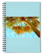 Desert Palm Spiral Notebook