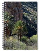 Desert Palms Spiral Notebook