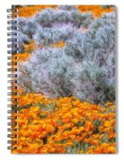 Desert Poppies And Sage Spiral Notebook