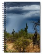 Desert Rains  Spiral Notebook