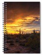 Desert Skies  Spiral Notebook