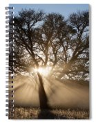 Desert Tree Spiral Notebook