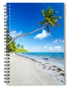 Deserted Beach And Palm Trees Spiral Notebook
