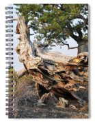 Design By The Desert Spiral Notebook