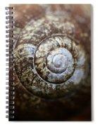 Design In Nature Spiral Notebook