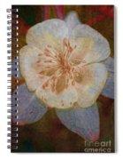 Designer Floral Spiral Notebook