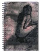 Desolation Boulevard Spiral Notebook