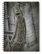 Despair Spiral Notebook