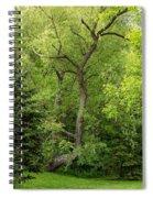 Determination 2 Spiral Notebook