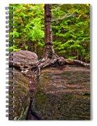 Determination Painted Spiral Notebook