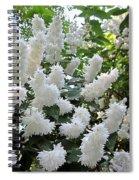 Deutzia Scabra Spiral Notebook