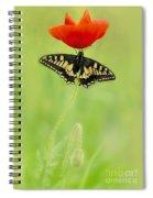 Devil And Angel Spiral Notebook