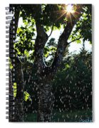Devil Beating His Wife - Weather Phenomena Spiral Notebook