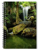 Devil Creek Falls  Spiral Notebook